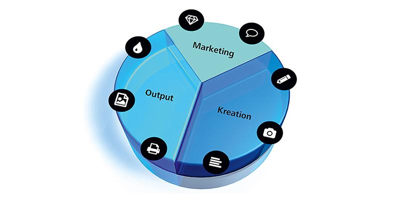 Tortengrafik_Marketing_800_400_100dpi